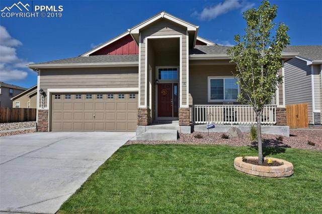 8337 Hardwood Circle, Colorado Springs, CO 80908 (#1408179) :: The Hunstiger Team