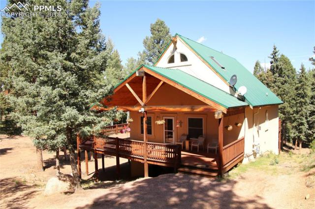 95 Kayfa Court, Florissant, CO 80816 (#1408379) :: The Peak Properties Group