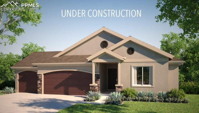 443 Stone Cottage Grove, Colorado Springs, CO 80906 (#1409056) :: Action Team Realty