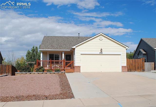 6916 Ketchum Drive, Colorado Springs, CO 80911 (#1409937) :: 8z Real Estate