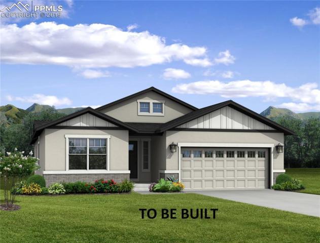 6490 Mancala Way, Colorado Springs, CO 80924 (#1411136) :: Action Team Realty