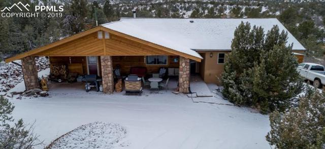 Locke Mountain Road, Florence, CO 81226 (#1414159) :: Perfect Properties powered by HomeTrackR