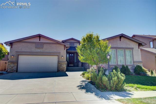 10023 Pinedale Drive, Colorado Springs, CO 80920 (#1418616) :: Jason Daniels & Associates at RE/MAX Millennium