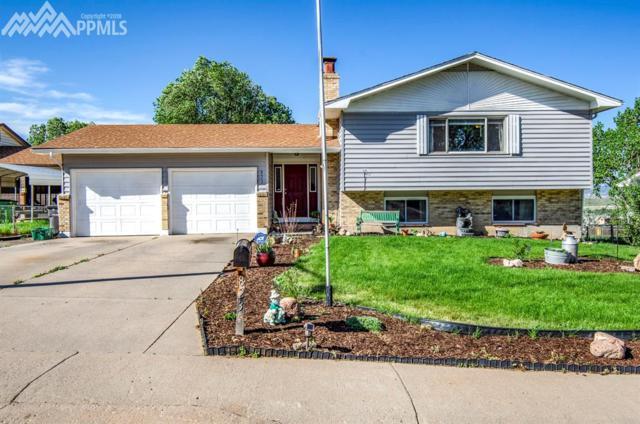 823 Drew Drive, Colorado Springs, CO 80911 (#1421468) :: Fisk Team, RE/MAX Properties, Inc.