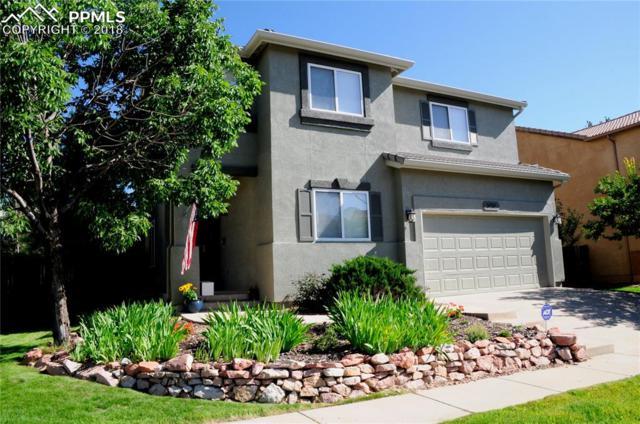 5656 Stable Court, Colorado Springs, CO 80920 (#1425641) :: Jason Daniels & Associates at RE/MAX Millennium