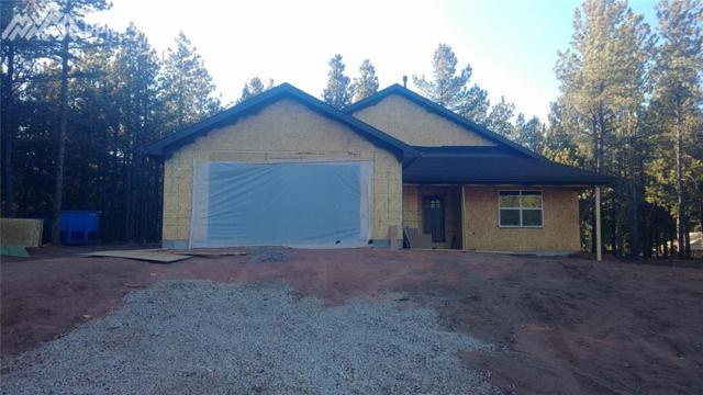 1334 Firestone Drive, Woodland Park, CO 80863 (#1426138) :: The Peak Properties Group