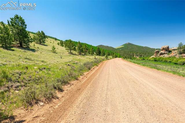 878 Anges Drive, Cripple Creek, CO 80813 (#1426424) :: Action Team Realty