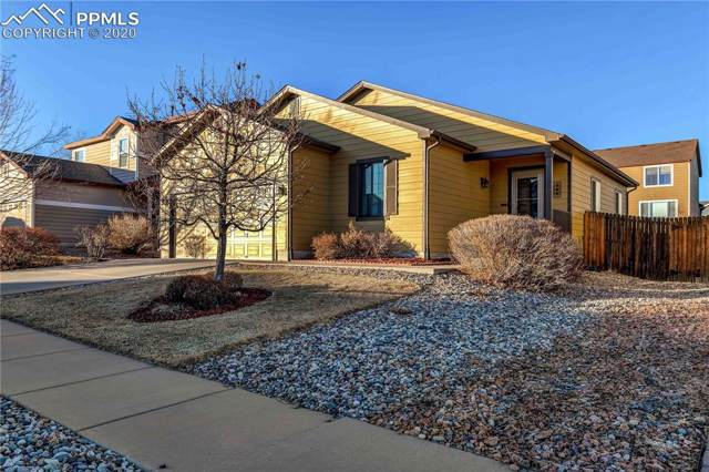 4561 Range Creek Drive, Colorado Springs, CO 80922 (#1430309) :: Tommy Daly Home Team