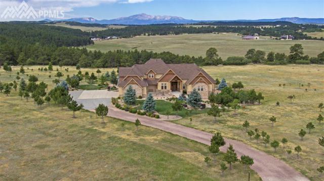 10326 Red Cloud Trail, Elbert, CO 80106 (#1431653) :: Harling Real Estate
