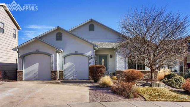 471 Assay Court, Colorado Springs, CO 80905 (#1435262) :: The Cutting Edge, Realtors