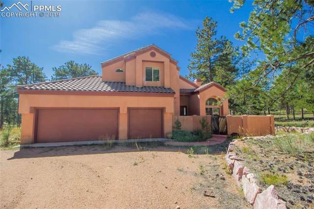 248 Pine Forest Road, Lake George, CO 80827 (#1437192) :: Perfect Properties powered by HomeTrackR