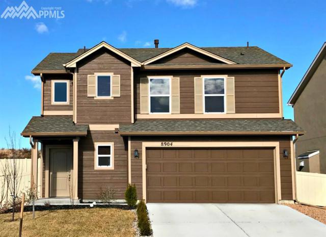 8904 Vanderwood Road, Colorado Springs, CO 80908 (#1438236) :: Jason Daniels & Associates at RE/MAX Millennium