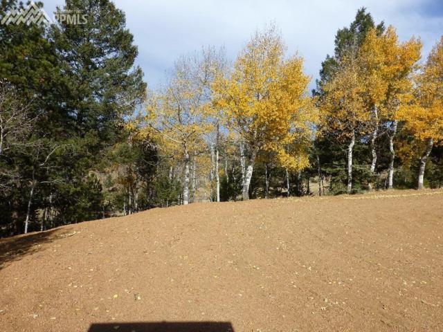 37 Lost Park Circle, Florissant, CO 80816 (#1445693) :: The Peak Properties Group