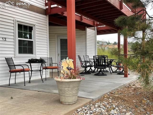 441 S First Street #12, Cripple Creek, CO 80813 (#1450350) :: Tommy Daly Home Team