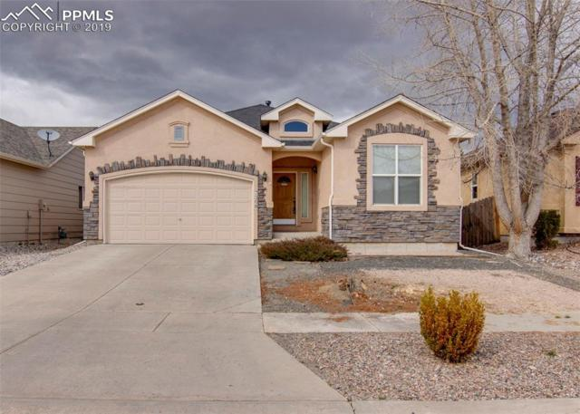 7368 Flathead Lake Drive, Colorado Springs, CO 80923 (#1453717) :: Tommy Daly Home Team