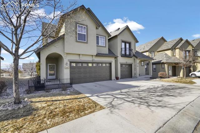 4254 Alder Springs View, Colorado Springs, CO 80922 (#1454140) :: Tommy Daly Home Team
