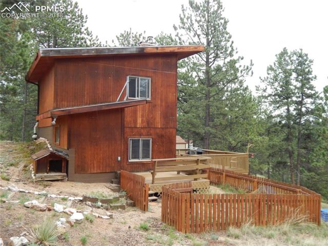 984 Rangeview Road, Divide, CO 80814 (#1456705) :: The Hunstiger Team