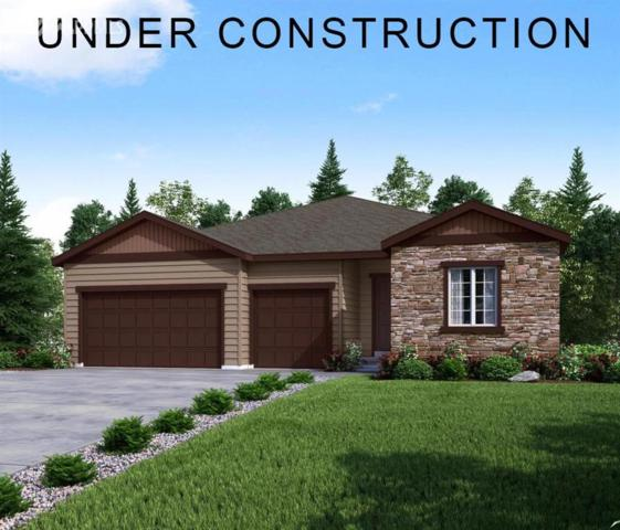 4127 Spanish Oaks Trail, Castle Rock, CO 80108 (#1457337) :: 8z Real Estate