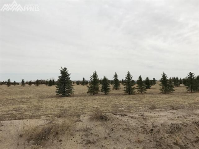 8212 Airpark Heights, Peyton, CO 80831 (#1458103) :: Action Team Realty