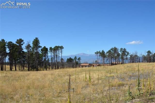 12920 Ward Lane, Colorado Springs, CO 80908 (#1460795) :: The Peak Properties Group