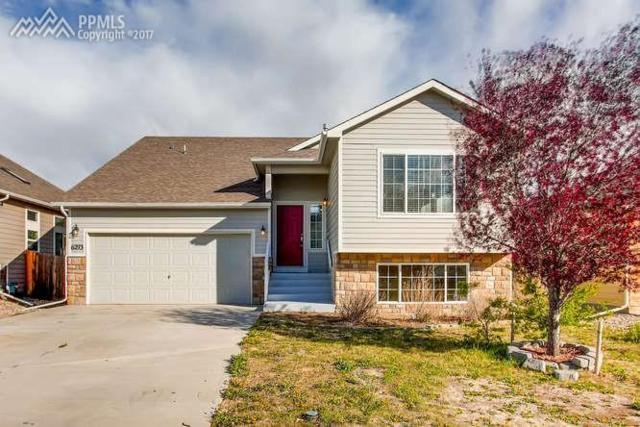 6293 Roundup Butte Street, Colorado Springs, CO 80925 (#1461326) :: 8z Real Estate