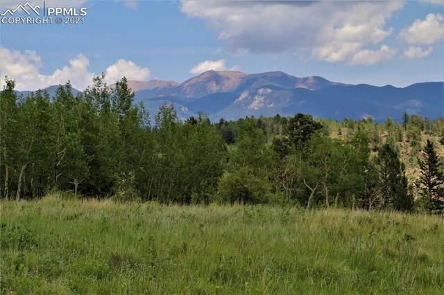 1395 County Road 863, Victor, CO 80860 (#1461383) :: The Treasure Davis Team | eXp Realty
