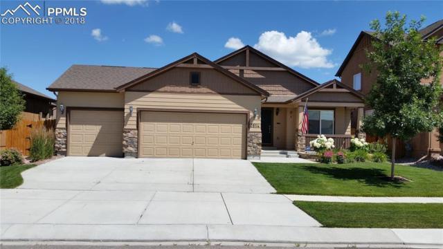 7614 Wrangler Ridge Drive, Colorado Springs, CO 80923 (#1461733) :: 8z Real Estate