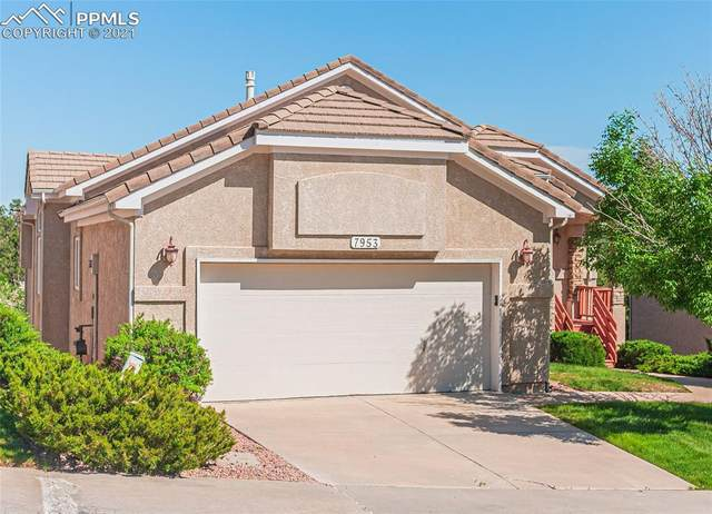 7953 Buck Haven View, Colorado Springs, CO 80919 (#1465502) :: Tommy Daly Home Team