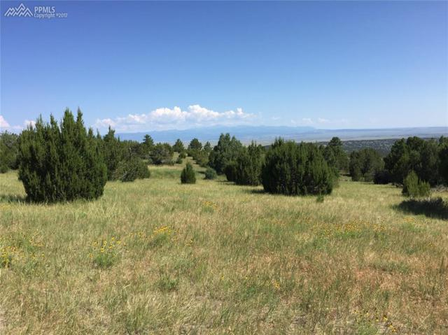 0 Savage Road, Pueblo, CO 81005 (#1466995) :: Action Team Realty