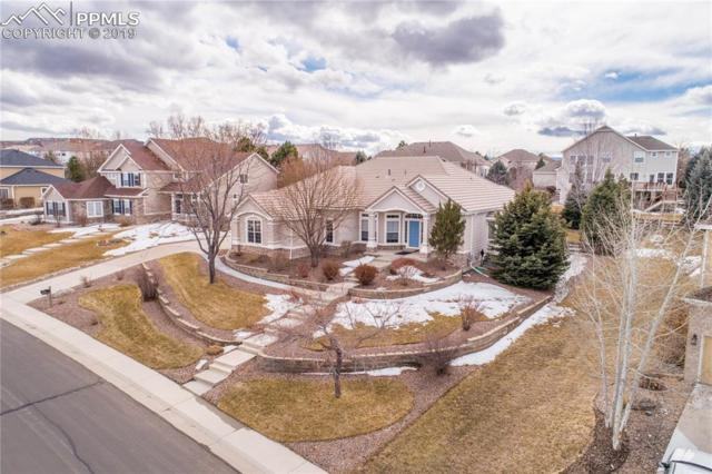 3513 Elk Run Drive, Castle Rock, CO 80109 (#1467985) :: CC Signature Group