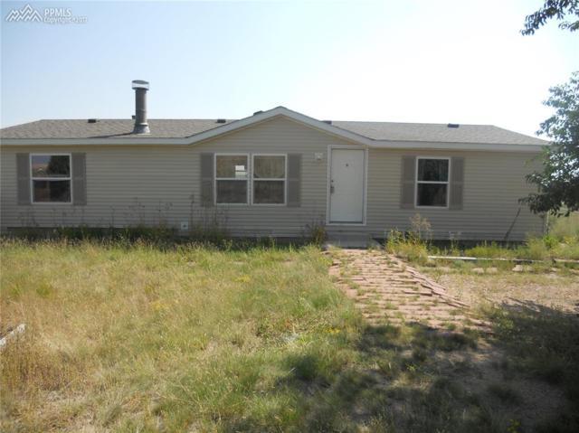 20625 El Nino Point, Colorado Springs, CO 80817 (#1468013) :: 8z Real Estate