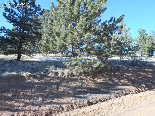 203 Tuscanora Drive, Cripple Creek, CO 80813 (#1468257) :: The Treasure Davis Team