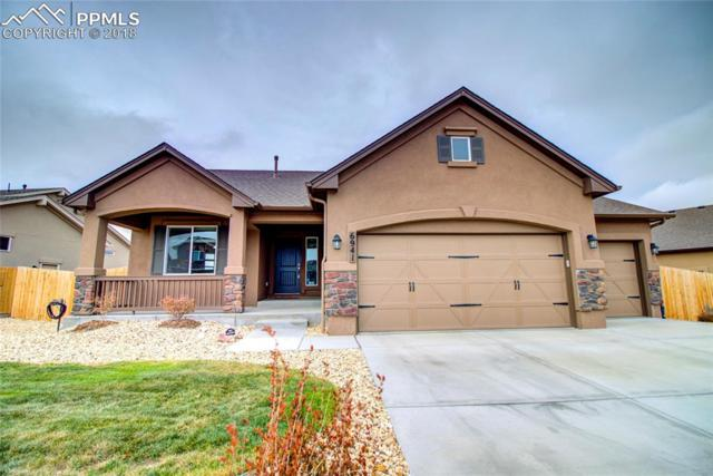 6941 Mustang Rim Drive, Colorado Springs, CO 80923 (#1470283) :: CC Signature Group