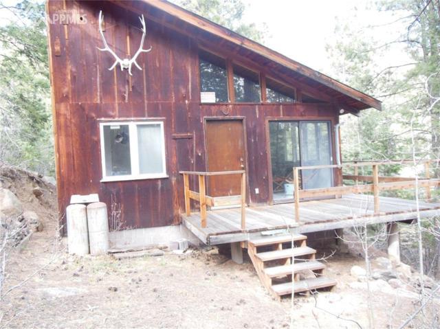 0000 Little Turkey Creek Road, Colorado Springs, CO 80929 (#1474231) :: Jason Daniels & Associates at RE/MAX Millennium