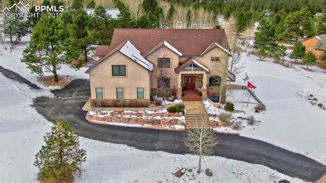 1290 Woodland Valley Ranch Road, Woodland Park, CO 80863 (#1475025) :: Tommy Daly Home Team