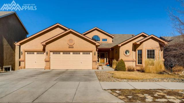 12372 Tenny Crags Road, Colorado Springs, CO 80921 (#1475652) :: 8z Real Estate