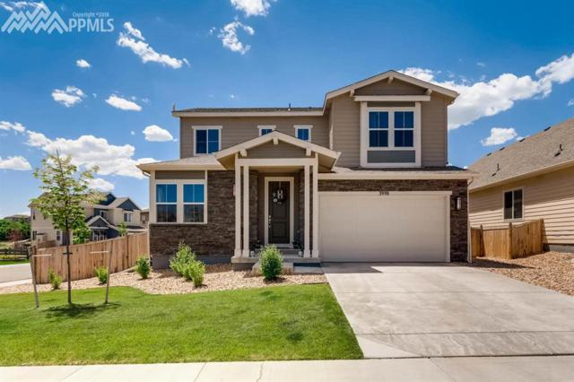3998 Long Rifle Drive, Castle Rock, CO 80108 (#1476278) :: Jason Daniels & Associates at RE/MAX Millennium