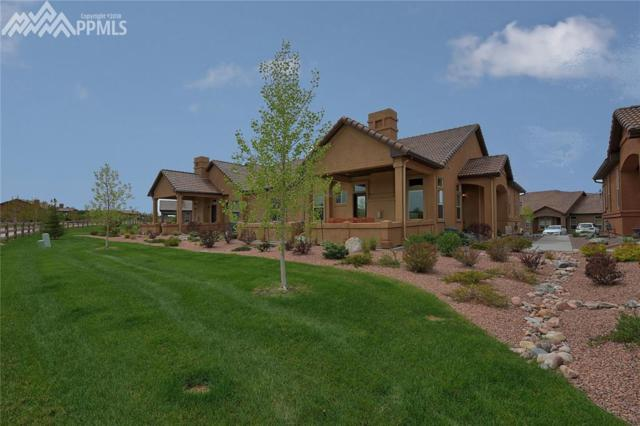 12928 Cupcake Heights, Colorado Springs, CO 80921 (#1482778) :: The Daniels Team