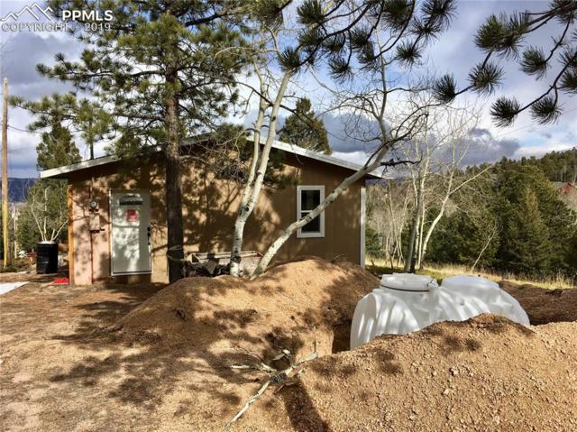 275 Klitowya Trail, Woodland Park, CO 80863 (#1484954) :: The Peak Properties Group