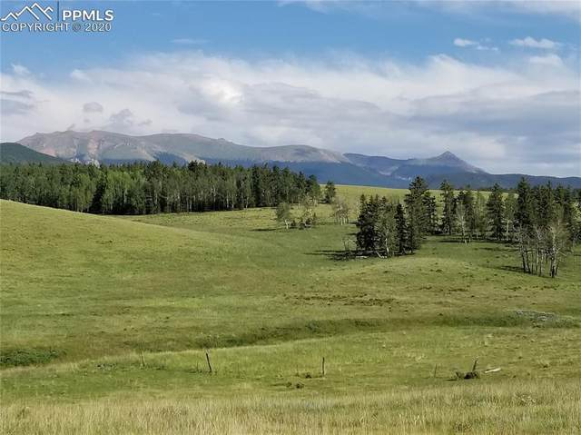 TBD S Highway 67 Highway, Divide, CO 80814 (#1485132) :: Finch & Gable Real Estate Co.