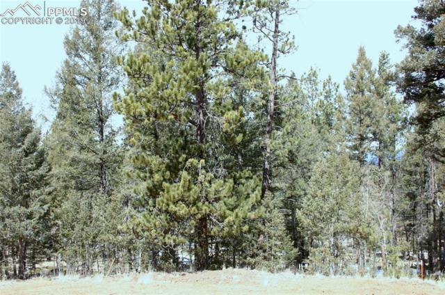 37 Carbon Circle, Florissant, CO 80816 (#1485381) :: Compass Colorado Realty