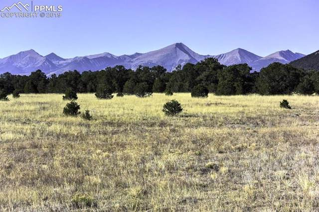 TR-54 12th Trail, Cotopaxi, CO 81223 (#1488714) :: The Kibler Group