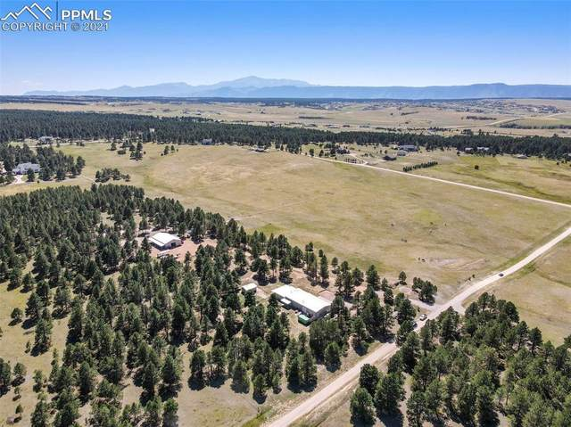 15550 Arfsten Road, Larkspur, CO 80118 (#1492753) :: Tommy Daly Home Team