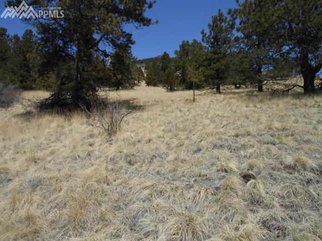 1055 Copper Mountain Drive, Cripple Creek, CO 80813 (#1498881) :: 8z Real Estate