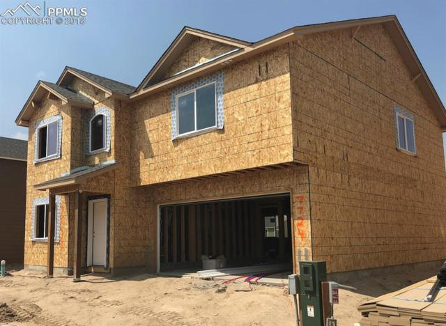 7724 Cruzer Heights, Peyton, CO 80831 (#1499801) :: Action Team Realty