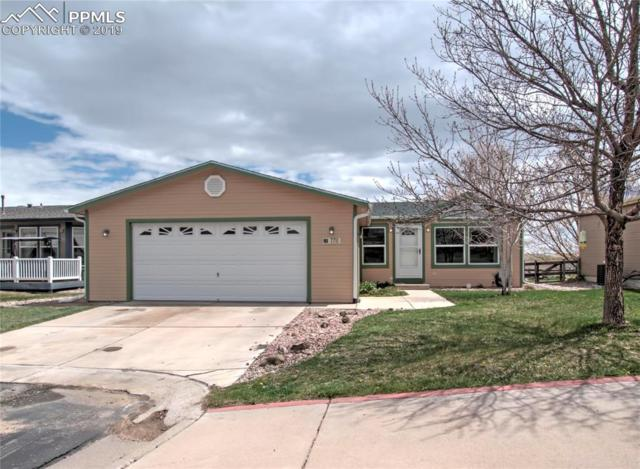 7711 Grizzly Bear Point, Colorado Springs, CO 80922 (#1500096) :: Jason Daniels & Associates at RE/MAX Millennium