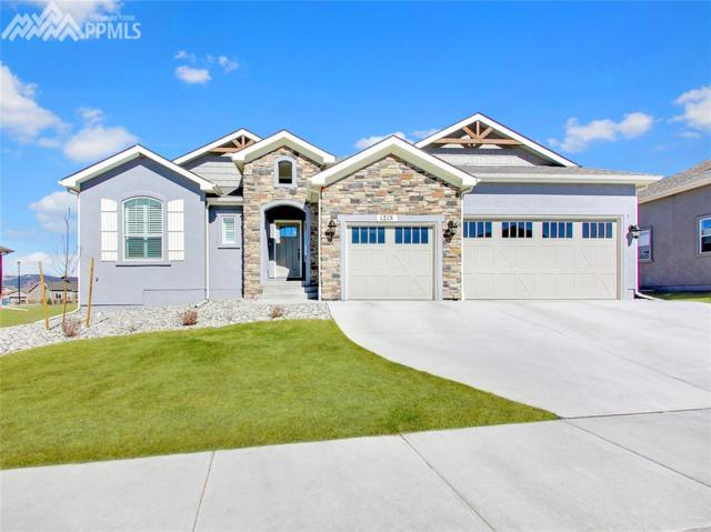 1215 Night Blue Circle, Monument, CO 80132 (#1501522) :: Action Team Realty