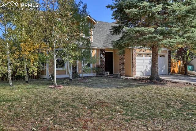 616 Trumbull Lane, Monument, CO 80132 (#1507067) :: Action Team Realty