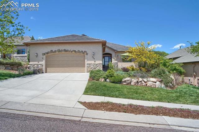 588 Concerto Drive, Colorado Springs, CO 80906 (#1509589) :: The Treasure Davis Team