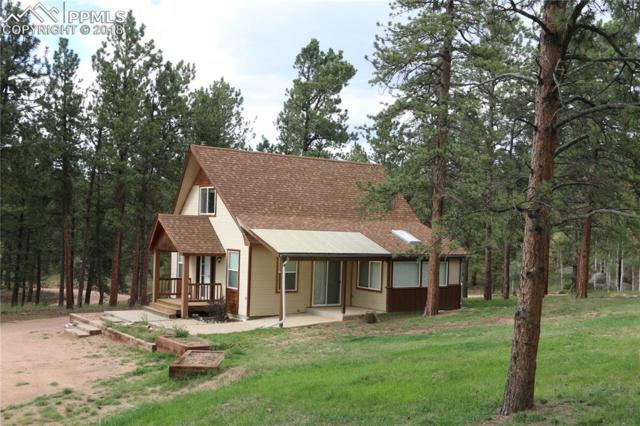 622 Obsidian Drive, Florissant, CO 80816 (#1510235) :: 8z Real Estate